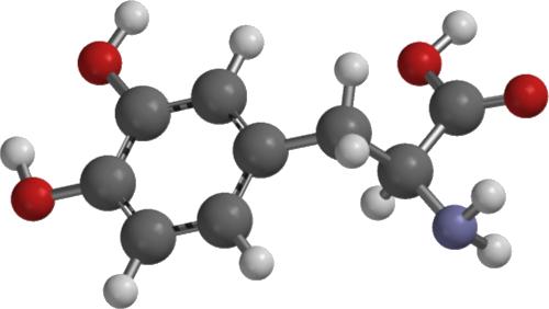 Ácido aspártico: estudios en humanos