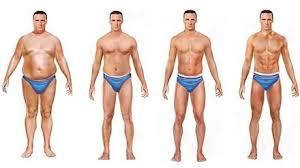 Perder grasa sin perder músculo