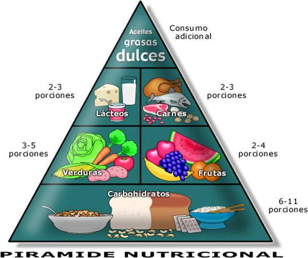 Pirámide nutricional y su composición, importante para