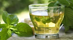 Propiedades del té verde en el fitness
