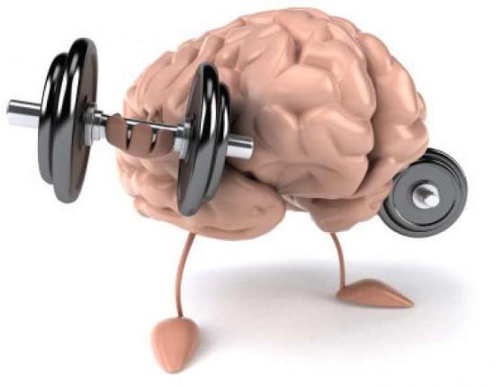 Resultado de imagen de cerebro ejercicio
