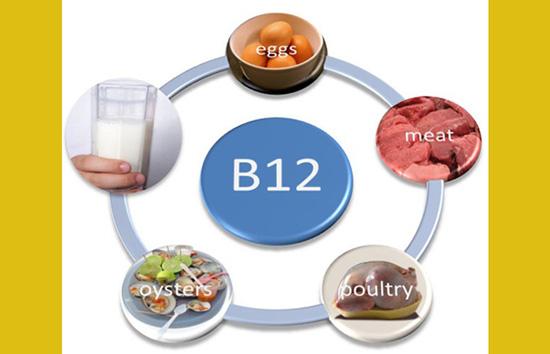 vitamina b12 alimentos vegetarianos