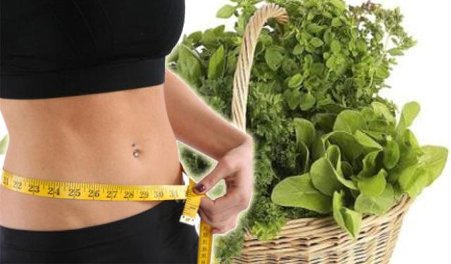 Control de peso y talla en adultos consumes