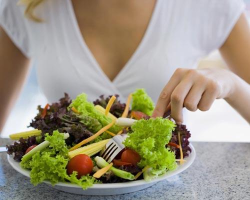 programa para calculo de dieta gratis
