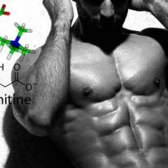 L-carnitina: efectos secundarios y contraindicaciones