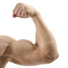 Los fallos más absurdos al hacer ejercicios de bíceps