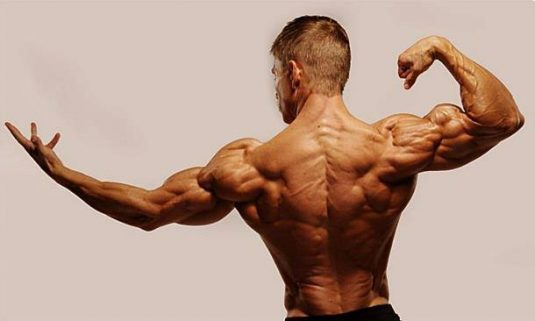 Consejos para ganar volumen muscular