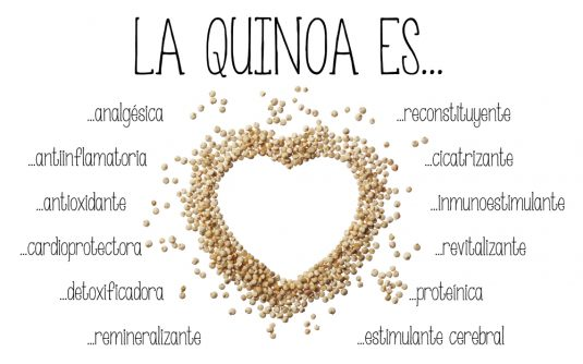7 propiedades de la quinoa