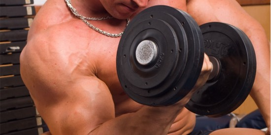 Principios básicos para definir músculos