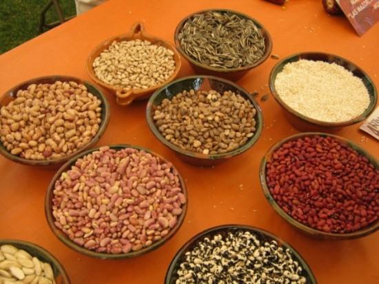 Alimentos ricos en zinc para la buena salud