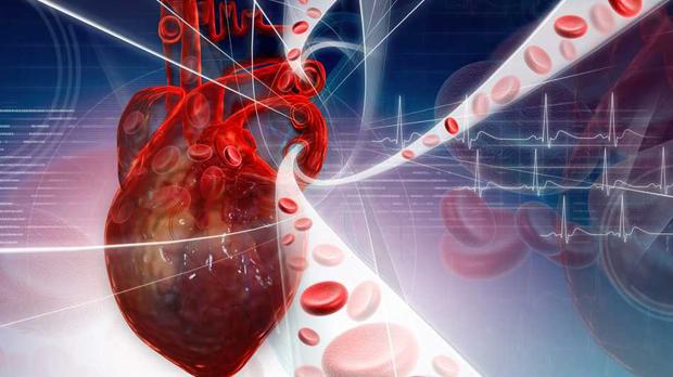 Colesterol HDL y LDL