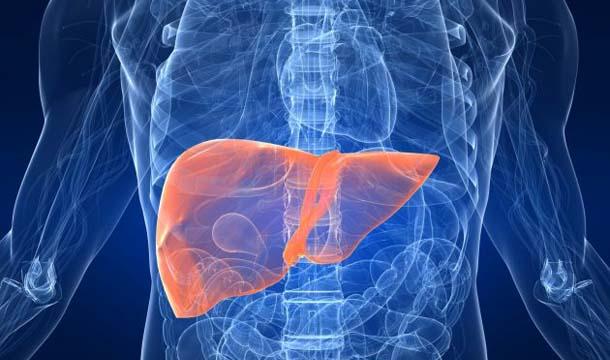 Cómo cuidar el hígado