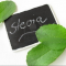 Stevia: propiedades y beneficios para la salud