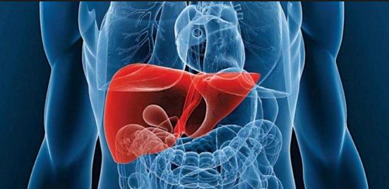 Cómo limpiar el hígado con 4 alimentos saludables