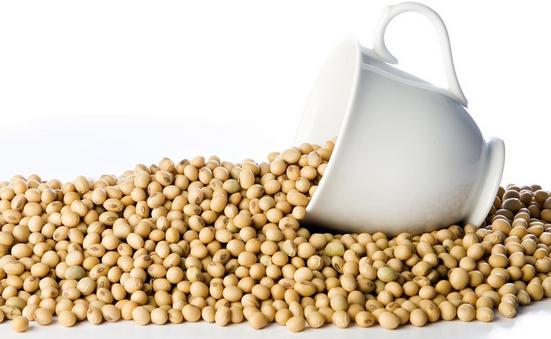 Alimentos proteínas ideales para el organismo