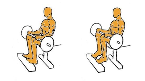Ejercicios músculo sóleo