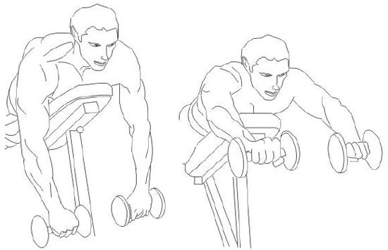 Entrenamiento de musculación para hombros