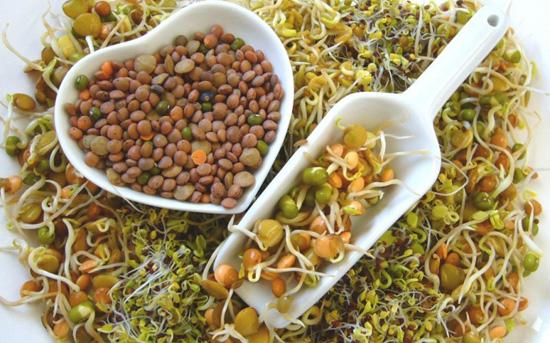 Alimentos macrobióticos
