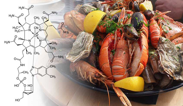 10 alimentos vitamina B12 recomendados