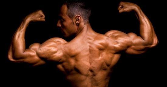 Creatina en definición muscular