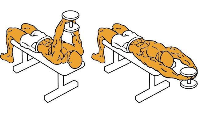 ejercicios para el pecho sin maquinas