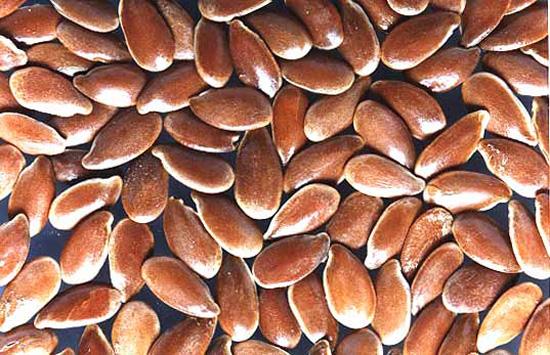 Lino: propiedades nutricionales