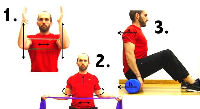 Músculo serrato anterior: todo lo que necesitas saber