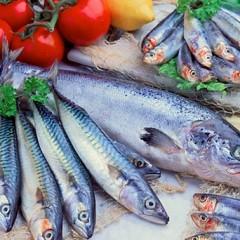 La guía definitiva del pescado: beneficios, peligros del mercurio y más