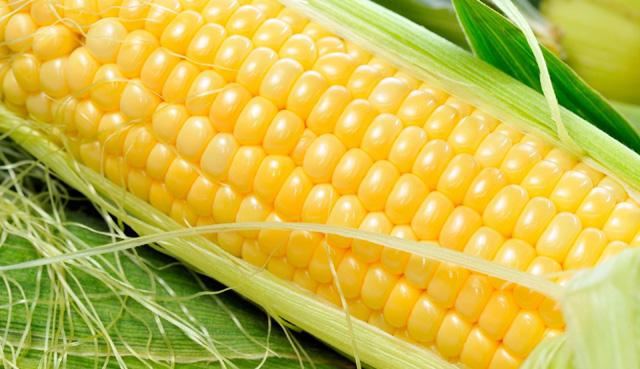 Propiedades del maíz