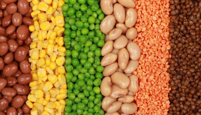 Alimentos ricos en proteínas y bajos en grasas