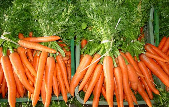 3 beneficios zanahoria que debes conocer
