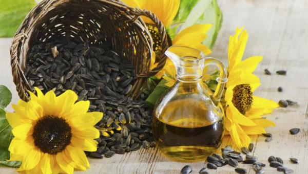 Aceite de girasol: beneficios en la salud