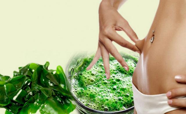 Alga espirulina y sus beneficios