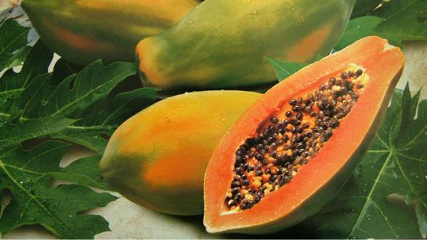 Papaya: propiedades curativas