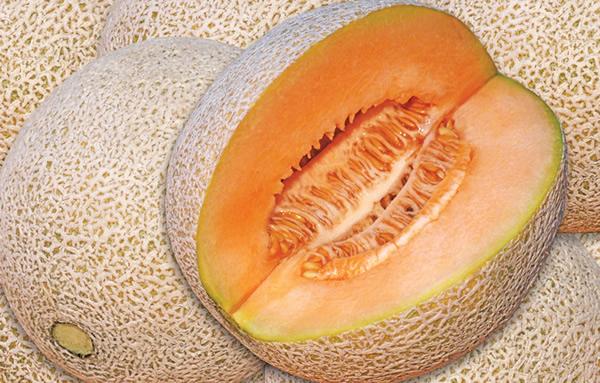Las calorías melón y sus beneficios