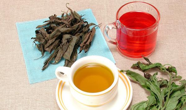 Té verde o té rojo ¿cuál elijo?