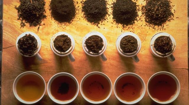4 tipos de té y sus propiedades