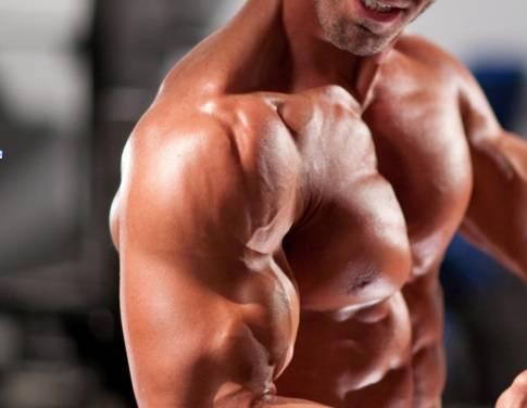 Cómo entrenar el deltoides posterior