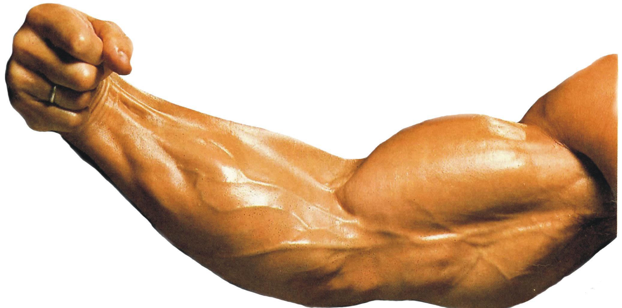 Cómo estirar el músculo deltoides