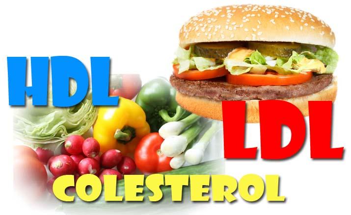 Cuántos tipos de colesterol existen