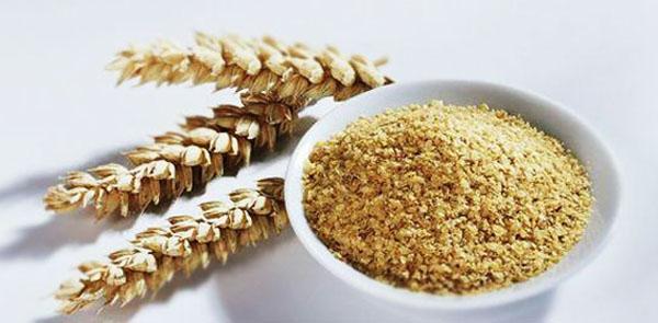 Propiedades del germen de trigo y sus beneficios