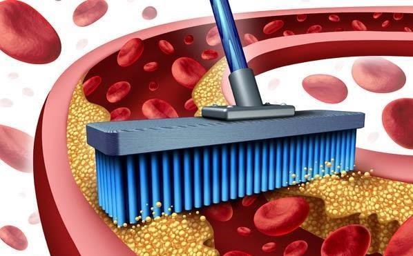 HDL colesterol alto