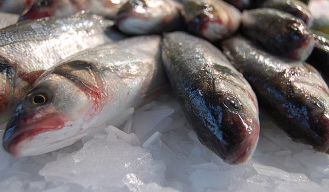 Pescado blanco: listado de variedades y sus propiedades