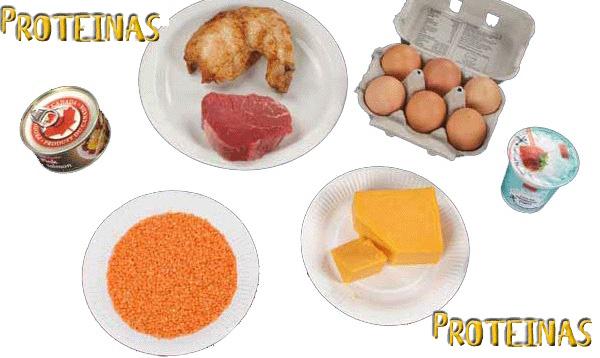 Qué alimentos tienen proteínas