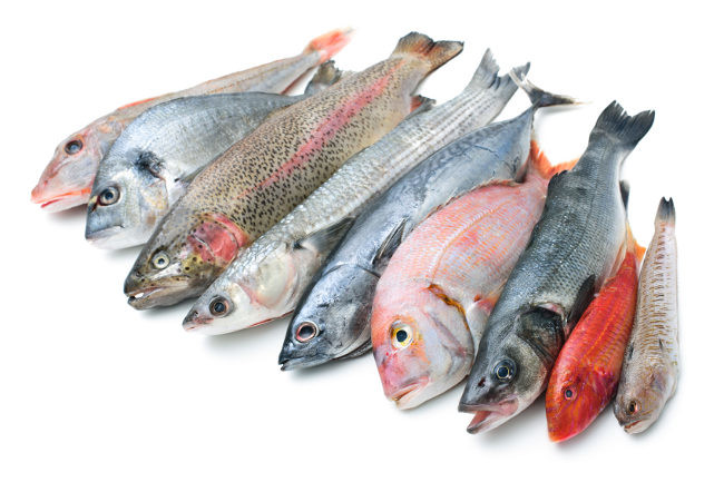 Diferencias del pescado azul y blanco