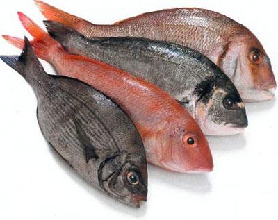 Tipos de pescado azul