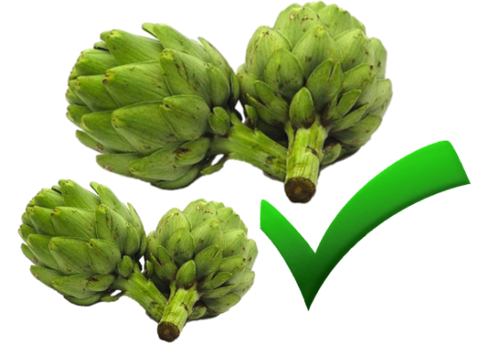 Dieta de alcachofa