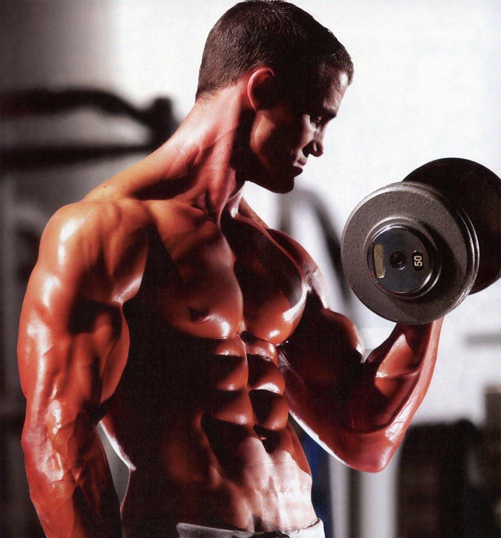 Rutinas de musculación