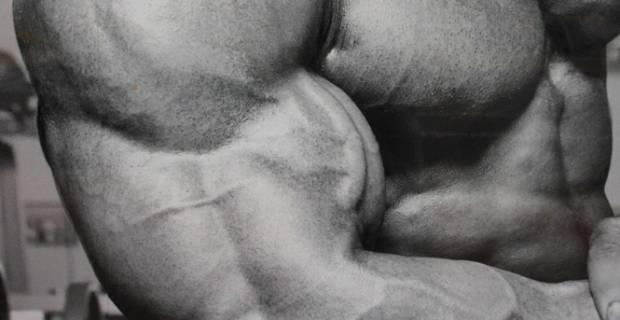 Rutinas de musculación.