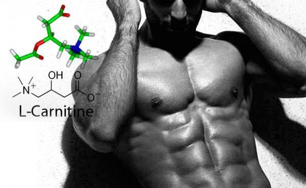 Carnitina ¿Cuáles son los efectos secundarios?